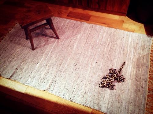 leathermat