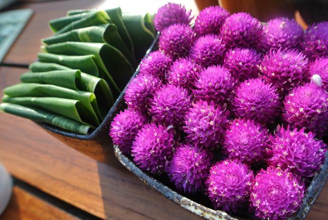 アジアン家具KAJA南国の花