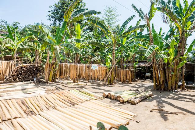 アジアン家具KAJAソファの素材となるバナナリーフ