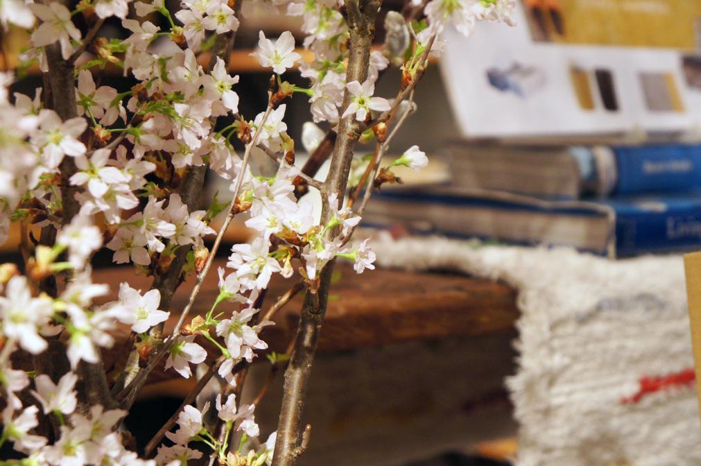 アジアン家具・雑貨KAJAイメージ画像