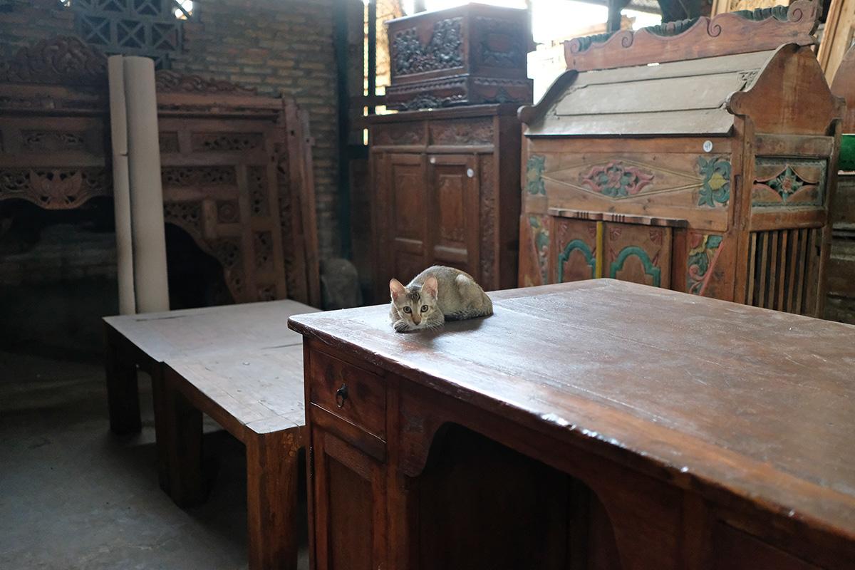 アジアン家具KAJA猫のいる工房